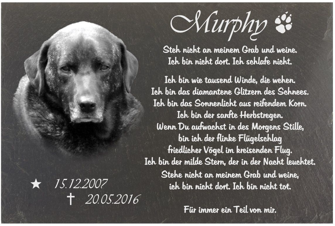 Murphy Grabstein, 20.05.16